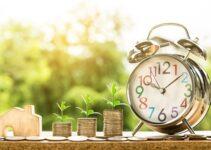 The indian economy pdf – Next big shot