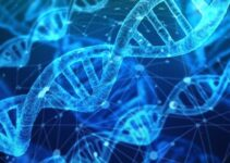 Dna full form What is the full form of DNA?
