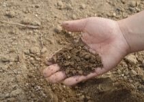 Types of soil in india – Indian Classification of Soils